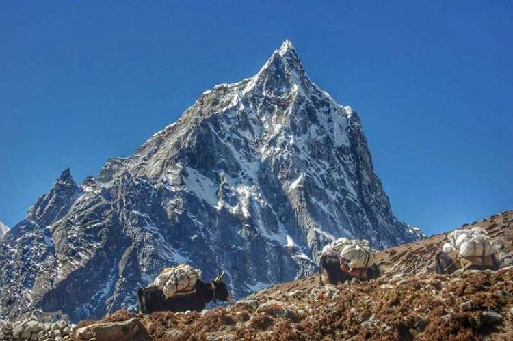 Everest Base Camp Trekking. Photo: Tashi Sherpa