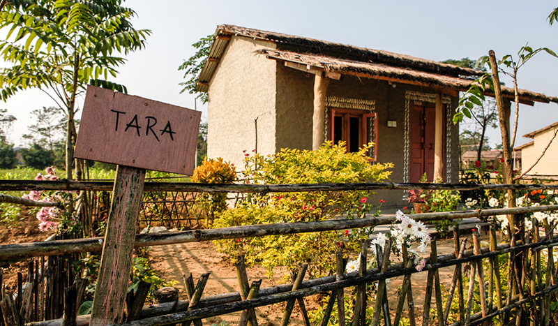 A weekend in Barauli Community Homestay