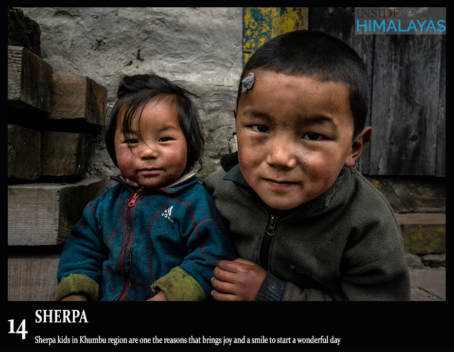 14 Sherpa