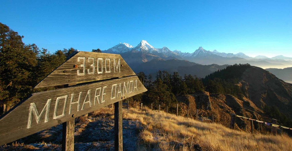 Mohare Dnada, highest point on Annapurna Community Trek.