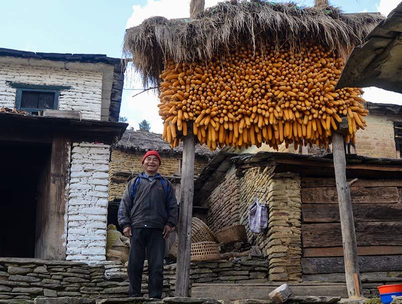 local-annapurna-community-trek
