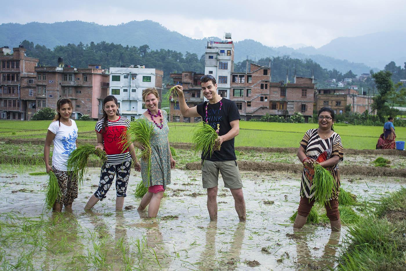 Rice Planting Festival