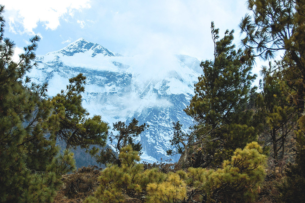 Staying Healthy While Trekking in the Himalayas