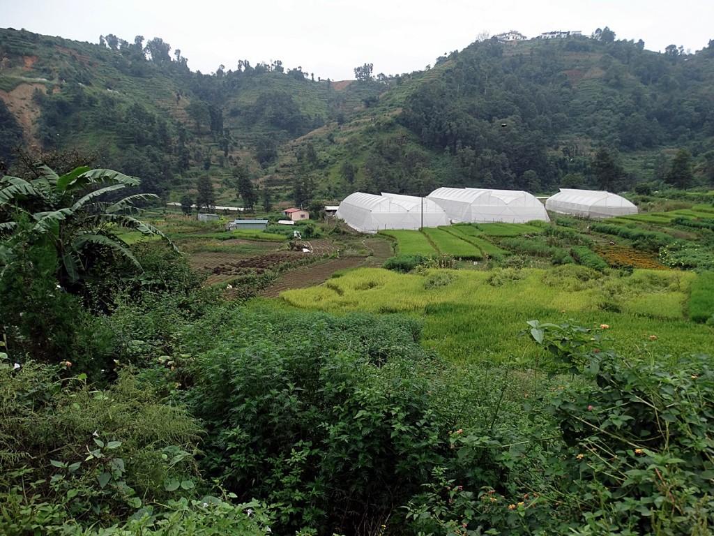 Cycling in the Kathmandu Valley: Swayambhunath and Ichangu Narayan