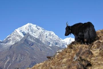 Trekking to Pikey Peak, Nepal