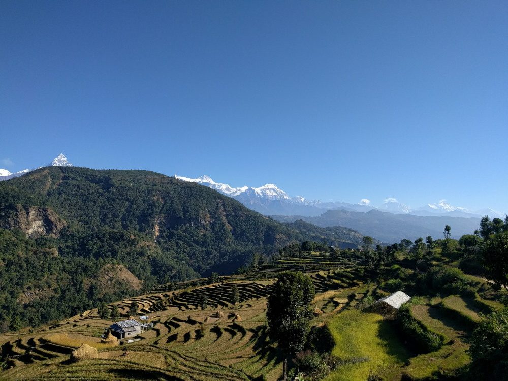 A Solo Woman's Hike to Panchase, Nepal