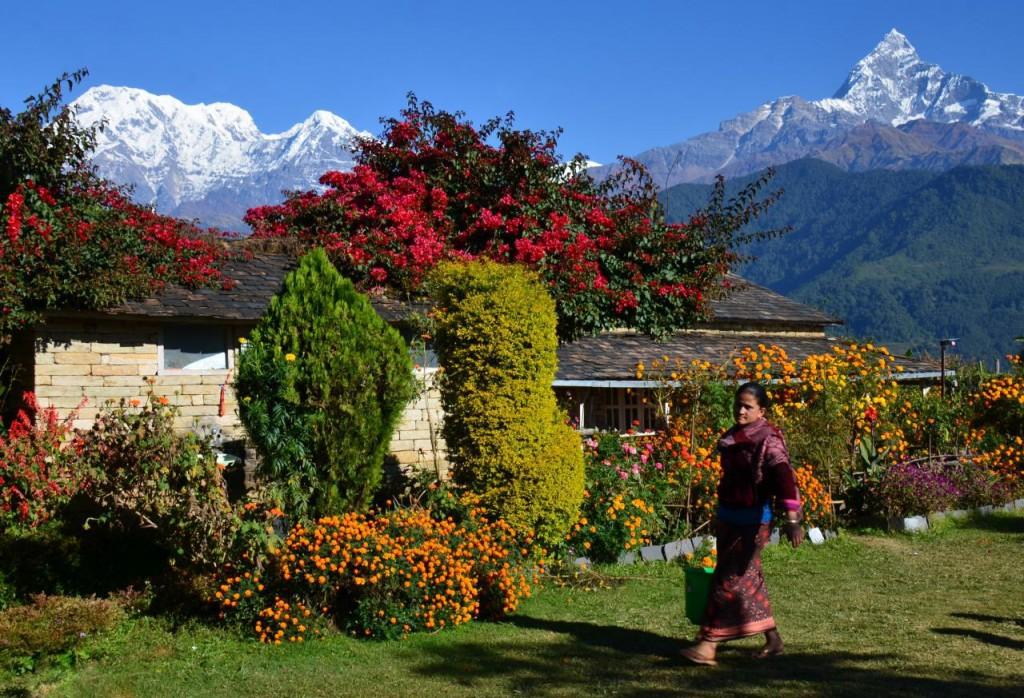 The Dhampus Village Hike, Nepal