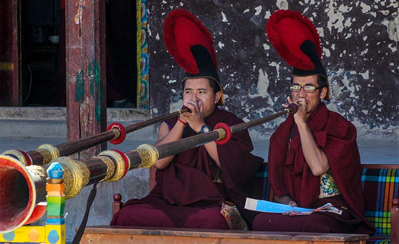 mustang-monk