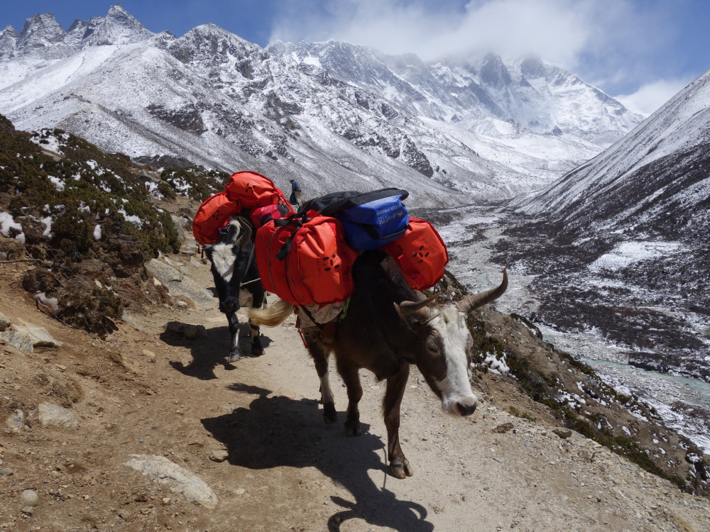 Der Three Passes Trek in Nepal: Eine aufregende Alternative zum EBC