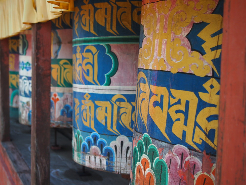 Understanding Buddhism in the Himalayas