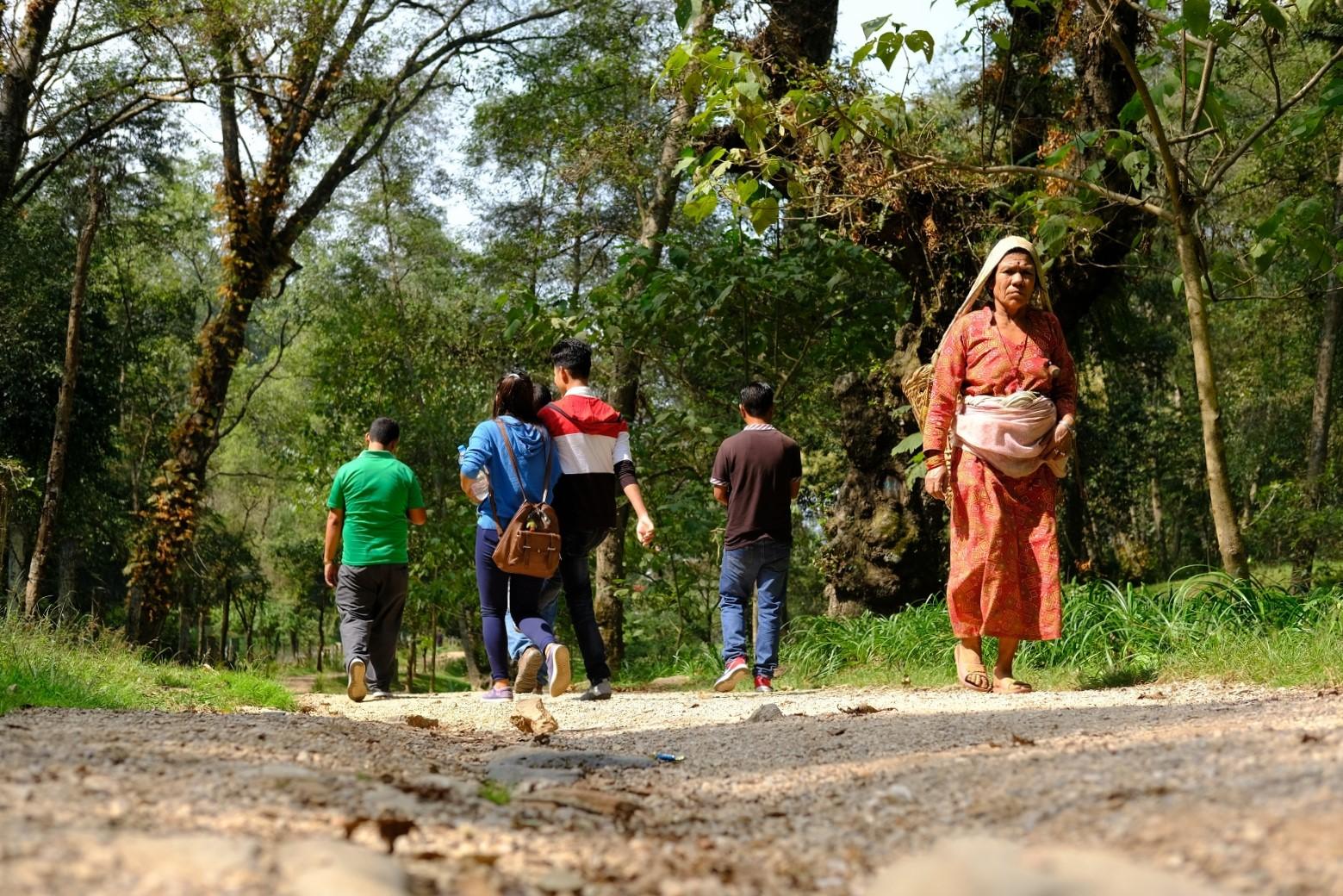 An Urban Retreat at the Godavari Botanical Gardens