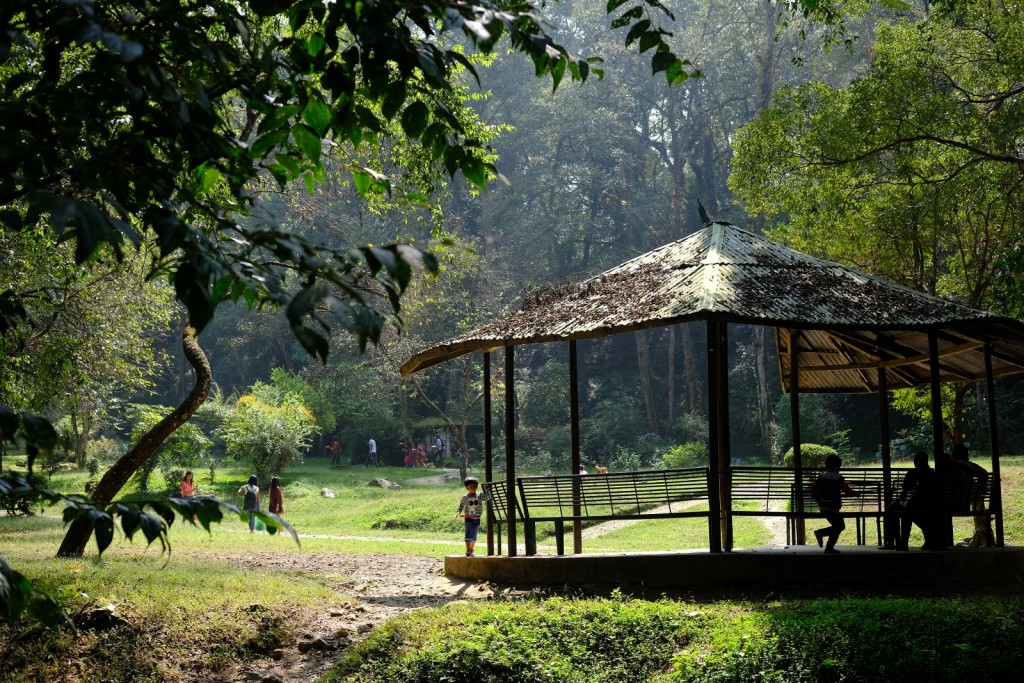 An Urban Retreat at the Godavari Botanical Gardens