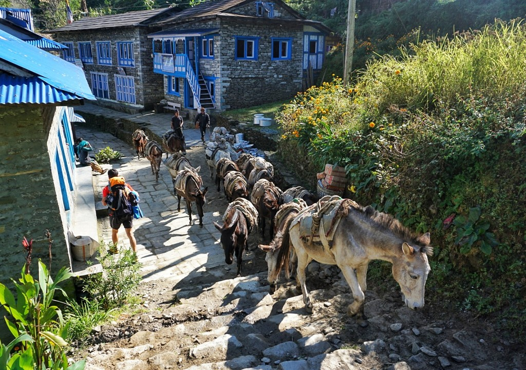 Trek from Jiri, the Alternate Route to Everest