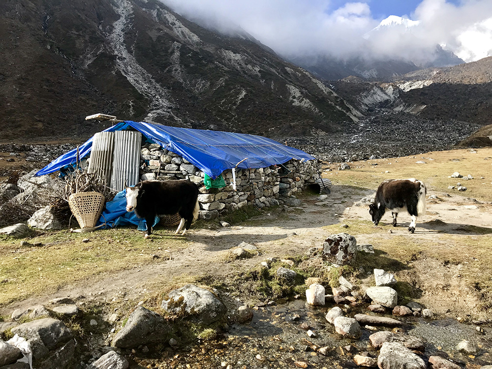 Peace and Solitude on the Dudh Kunda Trek