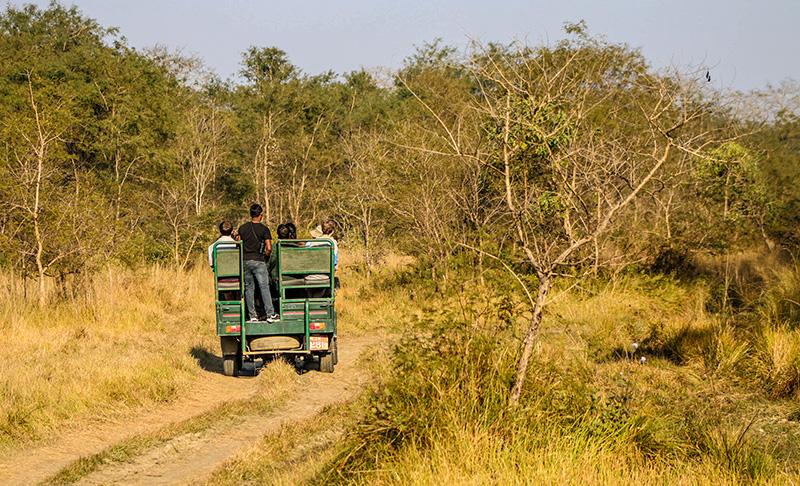 jungle-safari-barauli-community-homestay