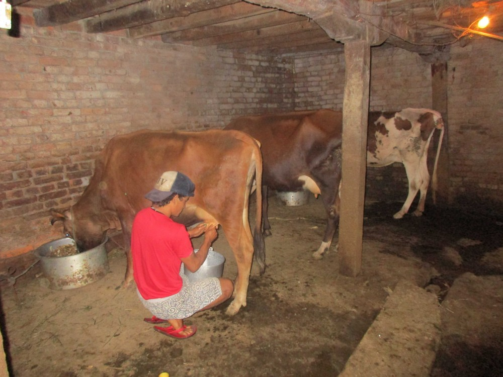 10 Reasons to Stay at a Homestay in Nepal