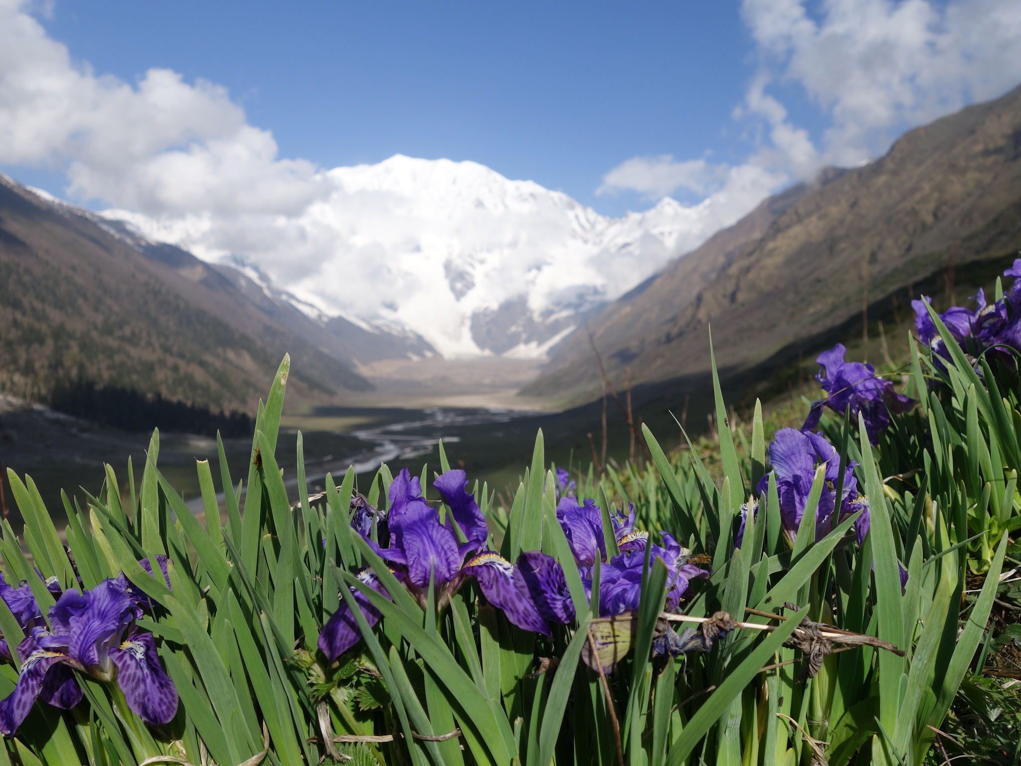 Plying the Ancient Karnali Salt Trail