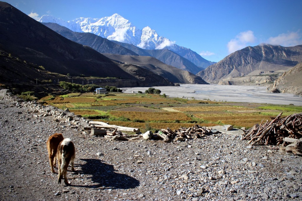 How to Make the Most of a Trip to Kagbeni, Mustang