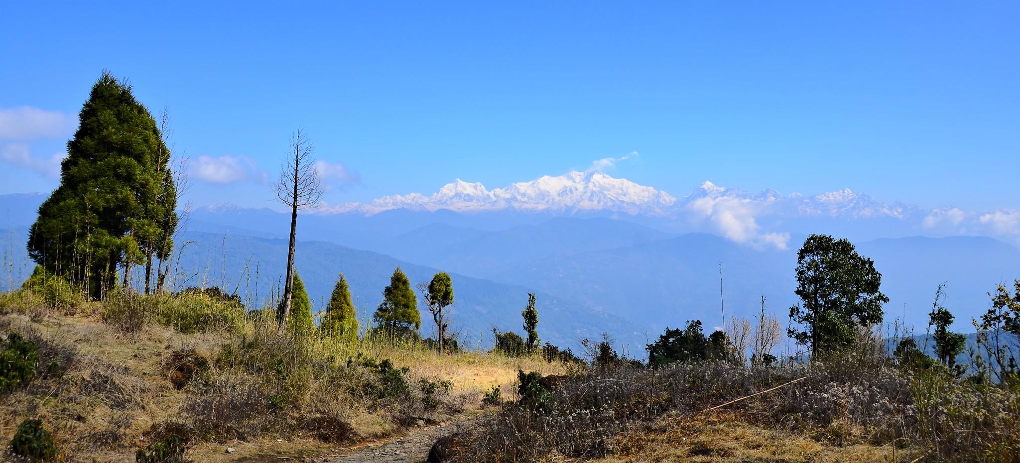 Shree Antu Homestay, Kanchenjunga and Ilam Tea Gardens