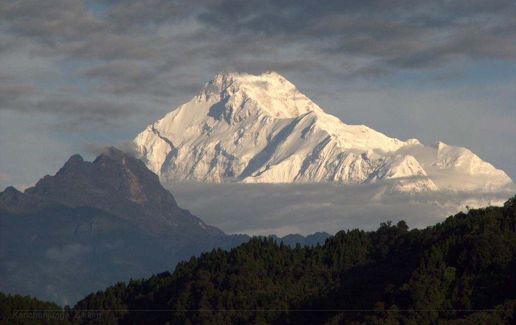 Shree Antu Homestay, Kanchenjunga and Ilam Tea Gardens