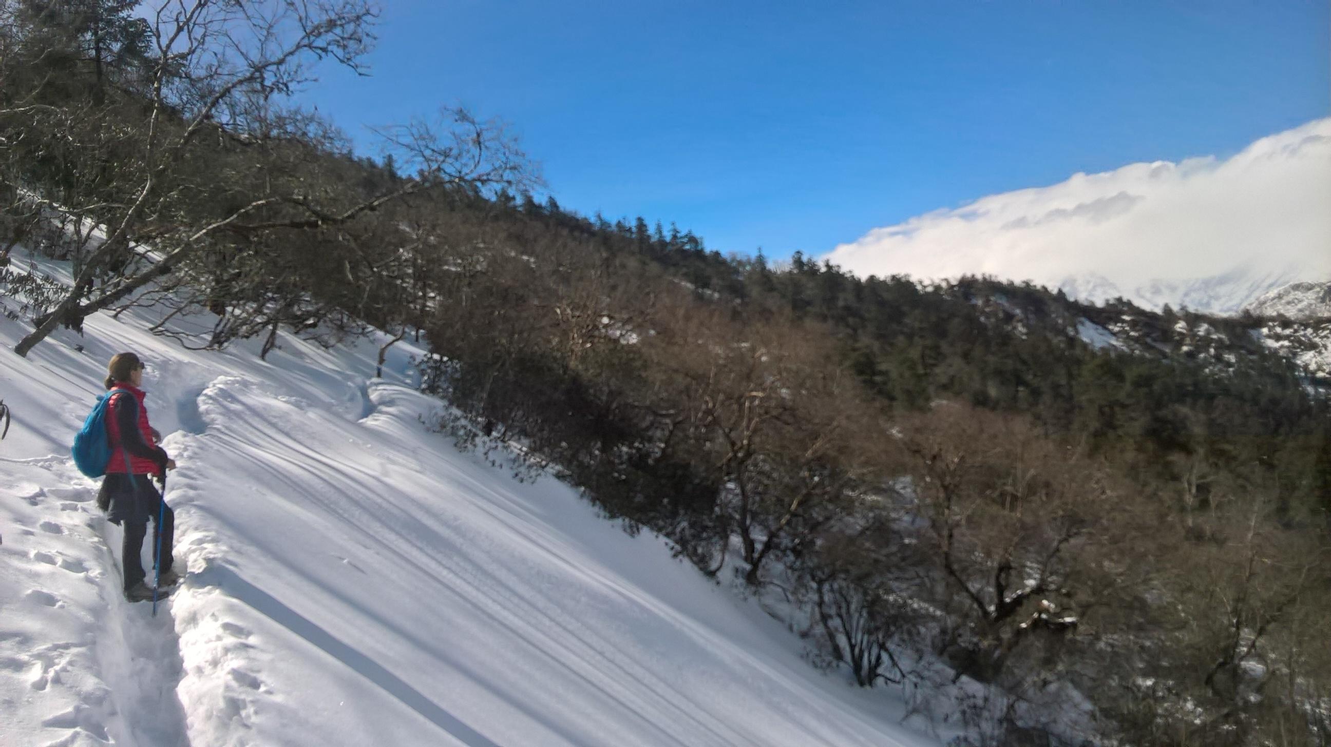 The Snow Trek to Muldai Viewpoint