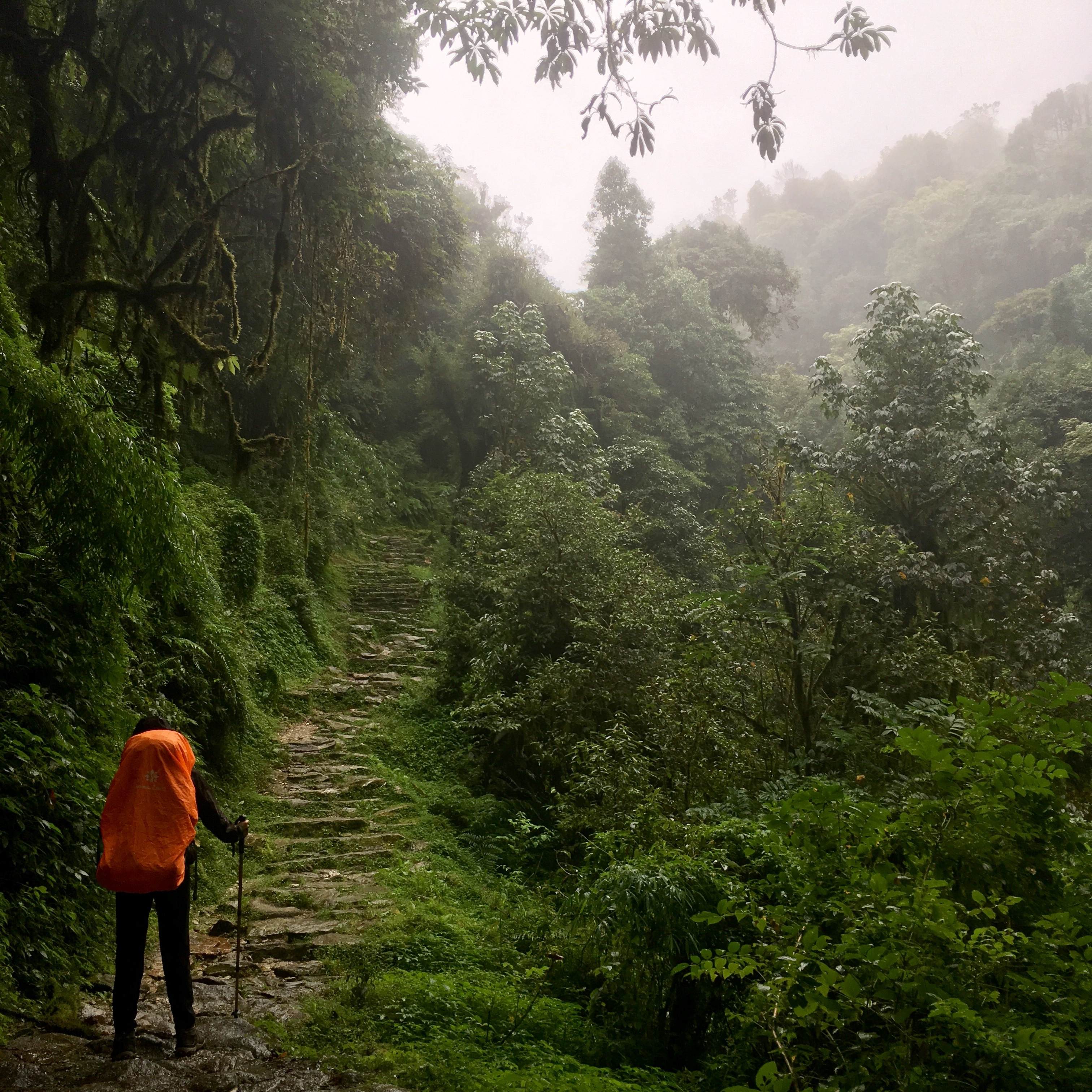 Finding the Beauty of the Himalayas in the Monsoon