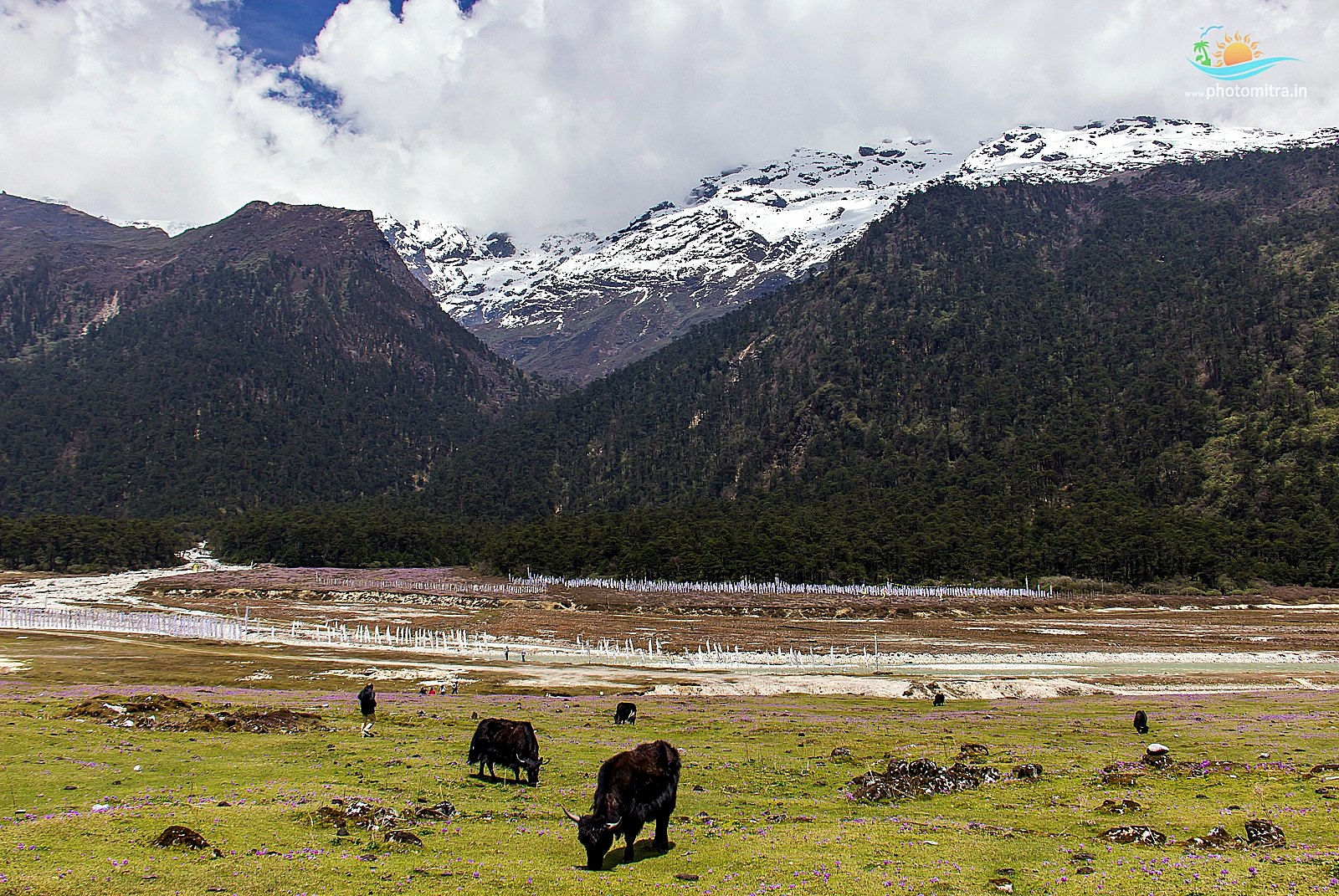 Adventures in Northern Sikkim