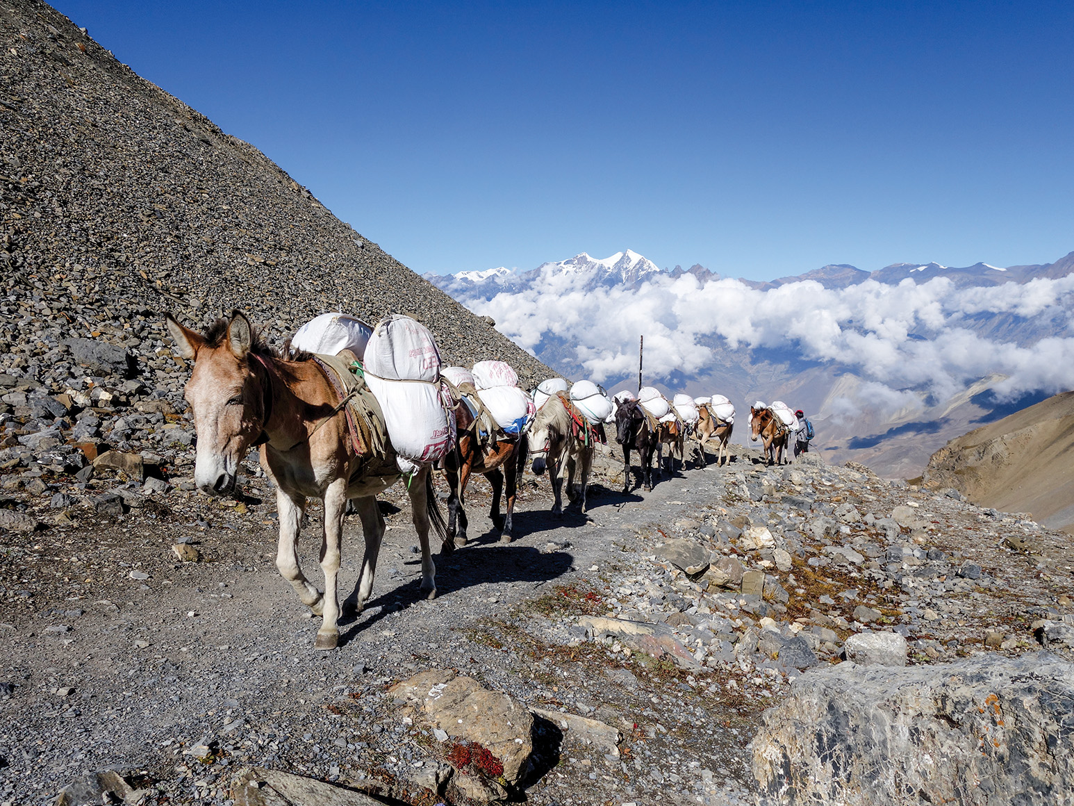 The Annapurna Circuit on Two Wheels