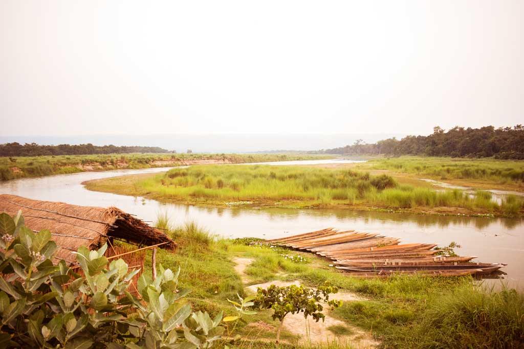 On Walking Safari in the Chitwan National Park