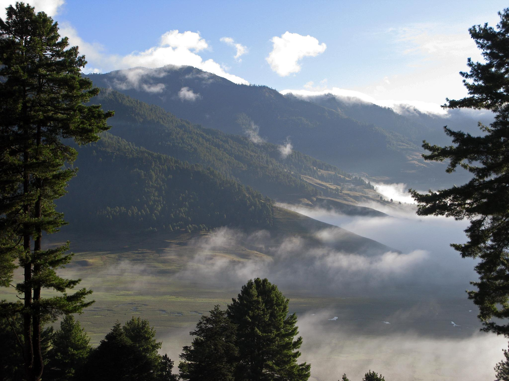 The Best Places to See Wildlife in Bhutan