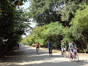 Cycling to Lumbini's Religious Sites