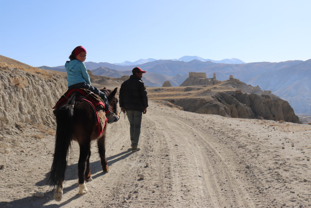 Magical Mustang Through the Eyes of a Child