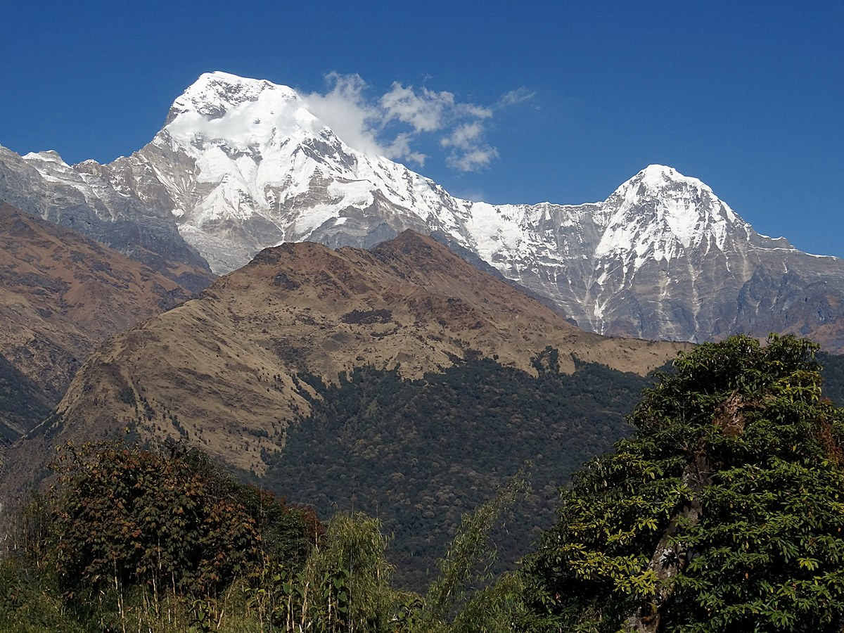 Amazing Experiences on the Ghorepani Trek, Annapurna Conservation Area