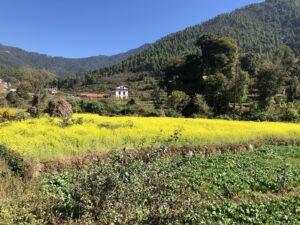 Hiking to Historic Chitlang Village